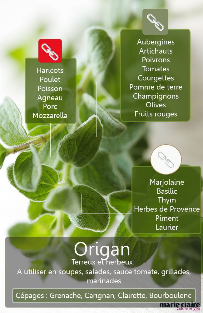 COMMENT UTILISER L'ORIGAN EN CUISINE L'origan, herbe de Provence bien connue et facile à utiliser pour parfumer des plats d'été, mérite qu'on découvre toutes les possibilités qu'elle offre en cuisine. Découvrez les meilleures associations de produits à faire pour l'utiliser au mieux en cuisine.
