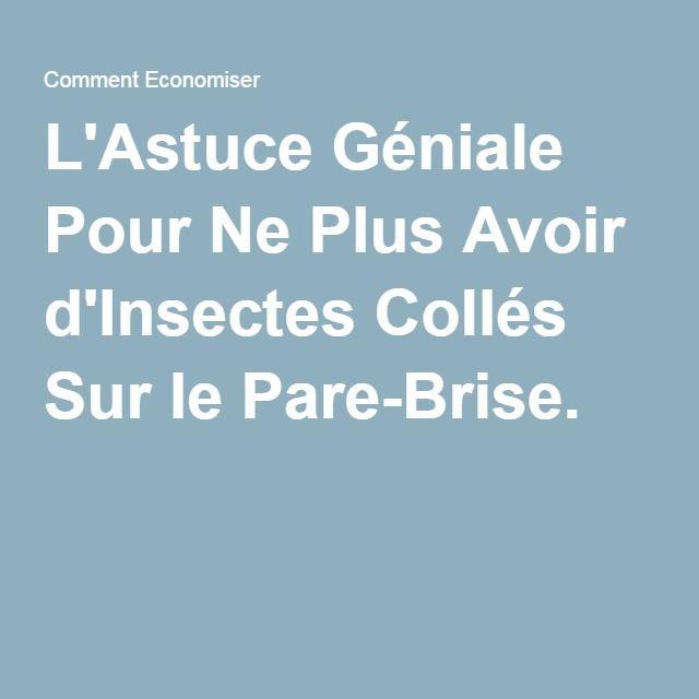 L'Astuce Géniale Pour Ne Plus Avoir d'Insectes Collés Sur le Pare-Brise.