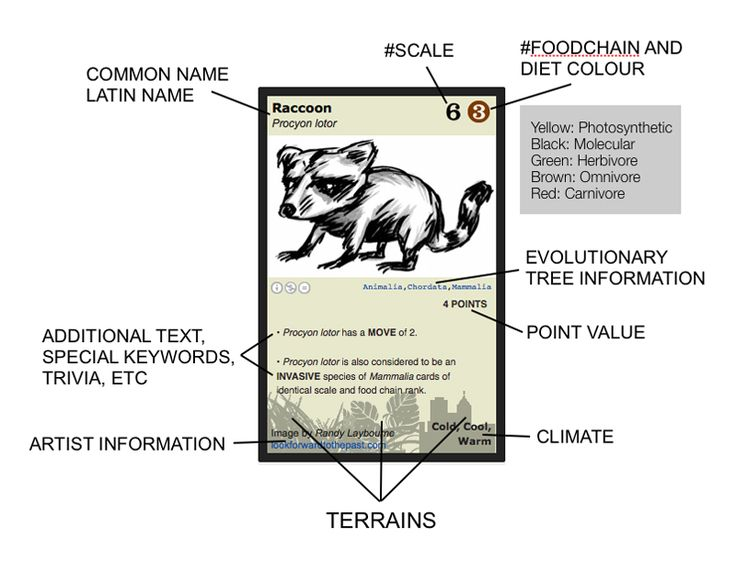 Phylo: The Trading Card Game. Teaches kids about animals because kids know more about Pokemon than about nature