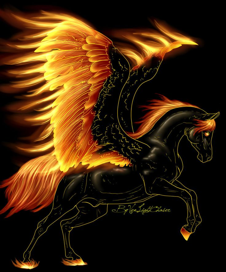 Pegasus of Flame by turbotauren.deviantart.com on @deviantART