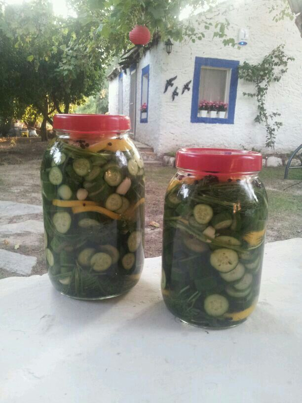 Pickle-time...