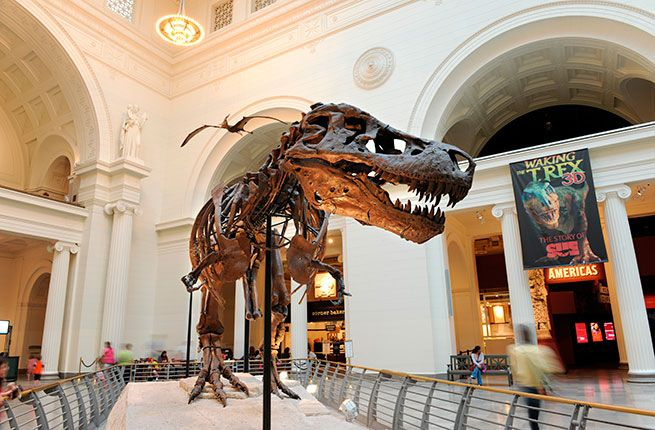 World's Best Natural History Museums