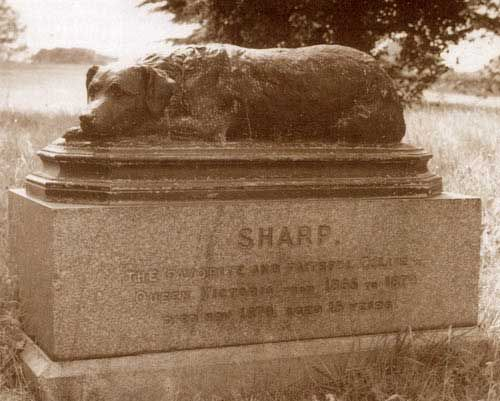 poor old SharpBorder Collies, Pets Cemetery, Queen Victoria, Queens Victoria, Royal Pets, Favorite Dogs, Pet Cemetary, Classic Style, Collies Sharpe