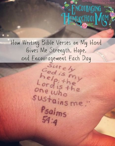 Write my essay for me cheap scripture