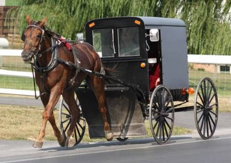 best 10 amish country pa ideas on pinterest amish