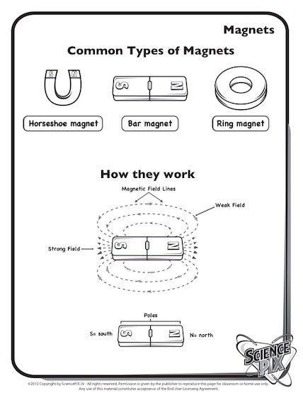 45 best images about science printables worksheets on pinterest. Black Bedroom Furniture Sets. Home Design Ideas