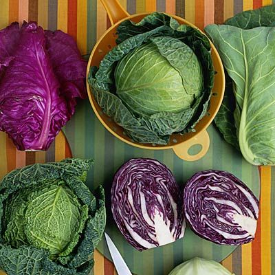 Alisa Chalklen: Cabbage - Why Is It Good For Us?