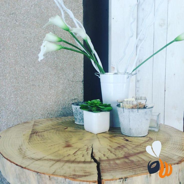 Tutti i #bar dovrebbero avere tavolini in tronco e #calle bianche!  lavorare in queste #location è più piacevole! #buongiorno #goodmorning #flowers #white #tree #breakfast #sweet #lovely #placetobe #work #agencylife #webdesign #webmaster #strategy #marketing #logo #design #follow #picoftheday #bestoftheday #phooftheday #igersmilano #milano #milan #womboit