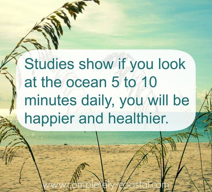 Studies show if you look at the ocean 5 to 10 minutes daily, you will be happier and healthier.
