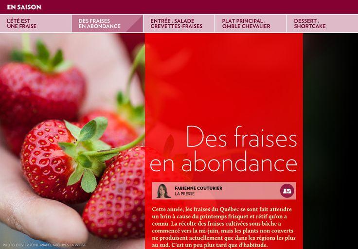 Cette année, les fraises du Québec se sont fait attendre un brin à cause du printemps frisquet et rétif qu'on a connu. La récolte des fraises cultivées sous bâche a commencé vers la mi-juin, mais les plants non couverts ne produisent a