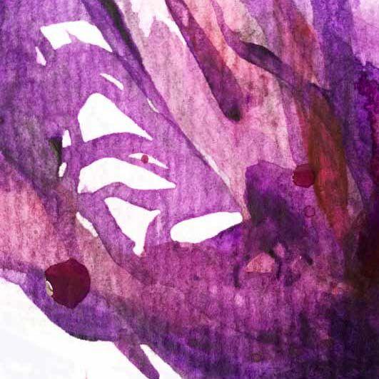 Condoleance- en aandachtskaart met paarsrode bloem ontworpen door Yon Prüst