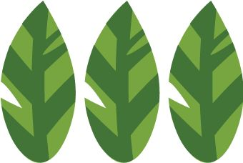 Tropical Leaf SVG File