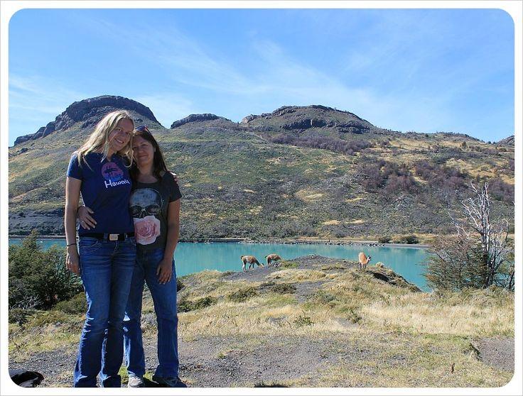 dani jess and llamas