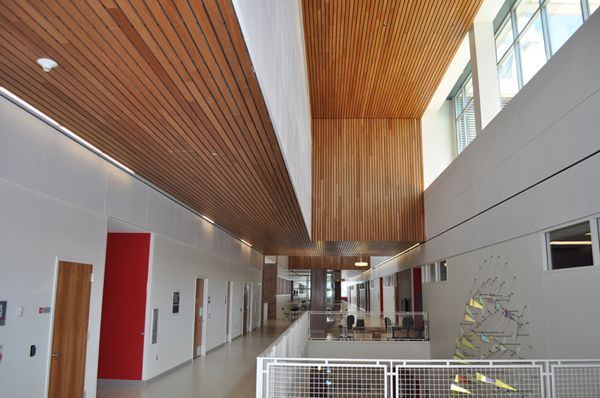 Linwood Ii Linear Wood Ceiling Cherry Architectural