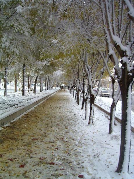 Shahin Shahr, Iran