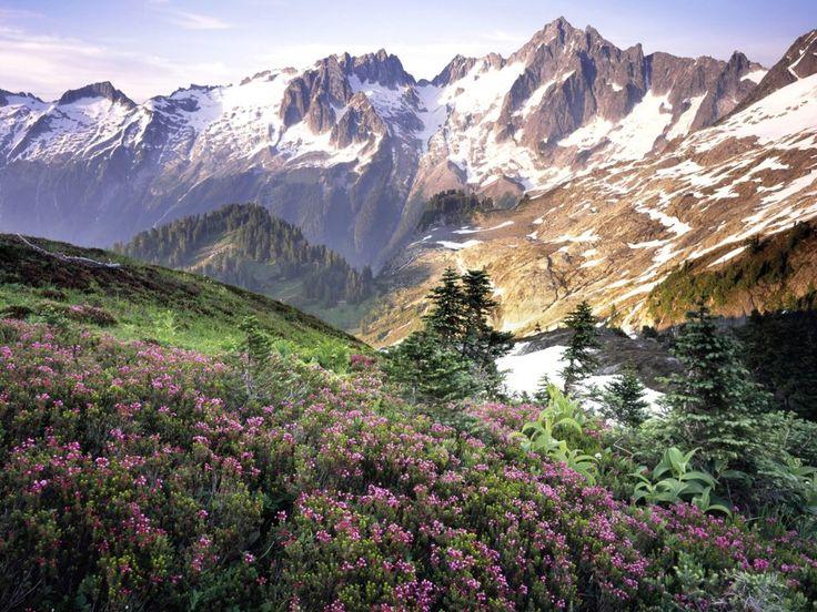 """""""5-те най-подценявани парка за вашите приключения на есента"""" - Официален сайт на Грузия PellegriniОфициален сайт на Грузия Pellegrini"""