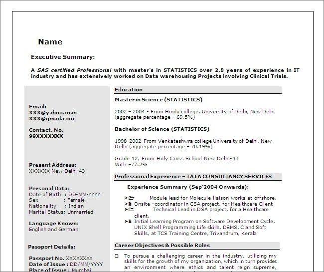 Sas Programmer Developer Free Resume Template Resume Template Resume Design Template Downloadable Resume Template