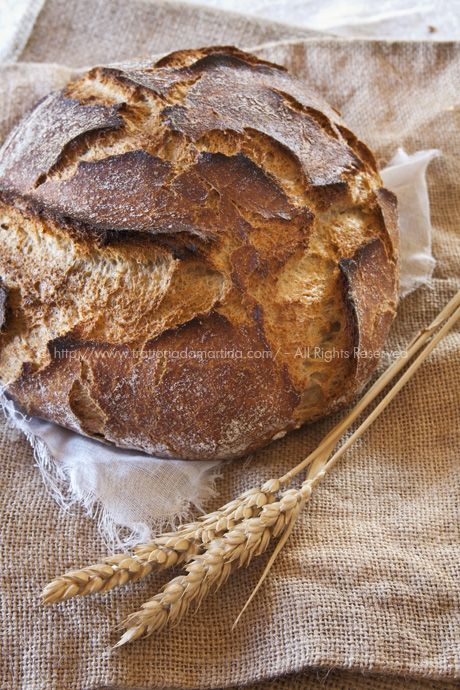 No-knead bread integrale