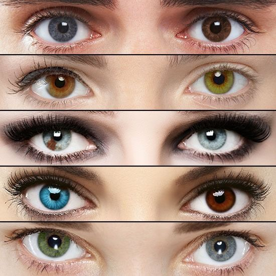 17 Best images about eyes on Pinterest | Different colored ...