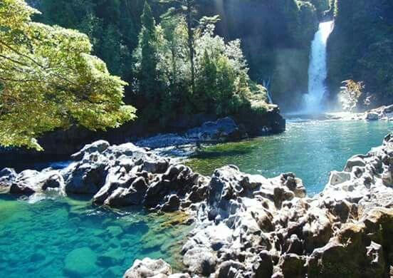 Chile. Reserva Natural Salto Huilo - Huilo