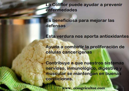 Coliflor, propiedades y beneficios de esta verdura