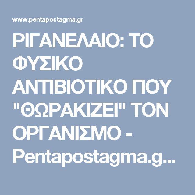 """ΡΙΓΑΝΕΛΑΙΟ: ΤΟ ΦΥΣΙΚΟ ΑΝΤΙΒΙΟΤΙΚΟ ΠΟΥ """"ΘΩΡΑΚΙΖΕΙ"""" ΤΟΝ ΟΡΓΑΝΙΣΜΟ - Pentapostagma.gr : Pentapostagma.gr"""