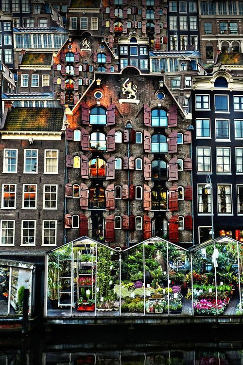 Flowermarket Amsterdam- The Netherlands