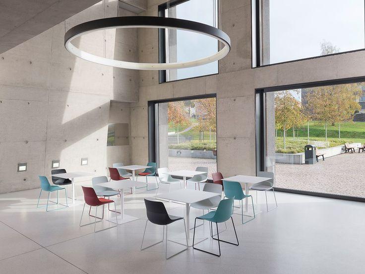 Zenith Interiors: Crona Light Chair - Wood