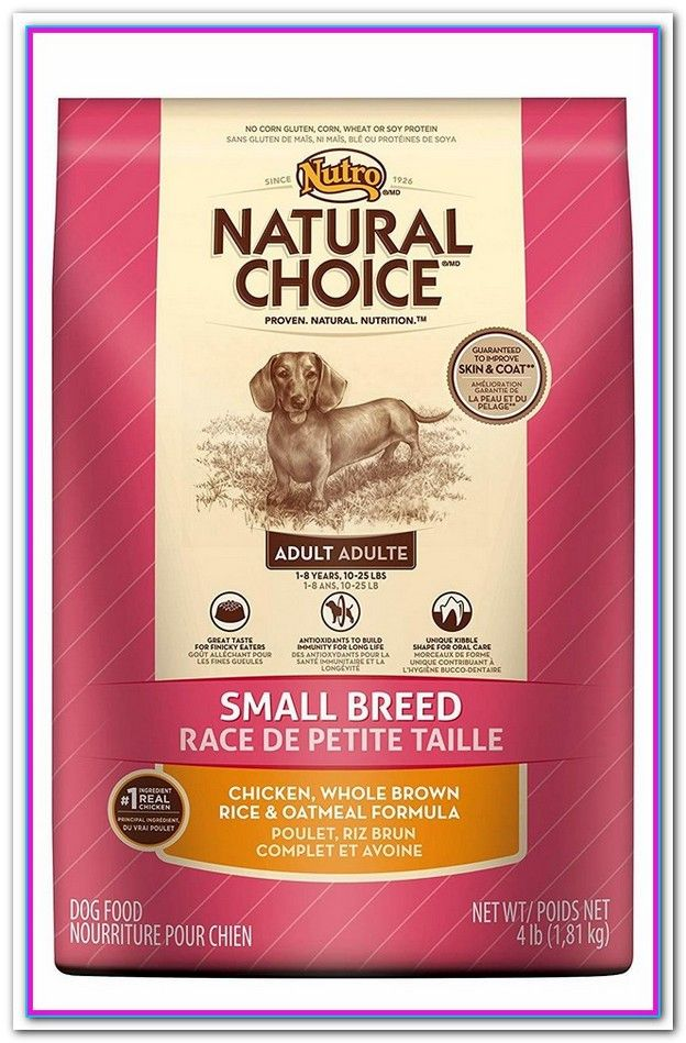 Best Holistic Dog Food For Small Breeds Dog Food Recipes