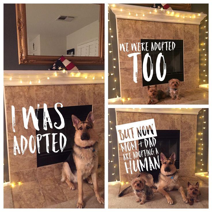 Our adoption announcement