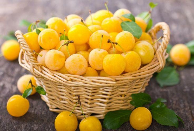 Os 10 Benefícios da Ameixa Amarela Para Saúde | Dicas de Saúde