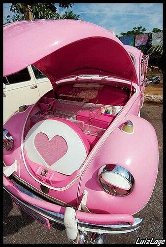 Pink Bug