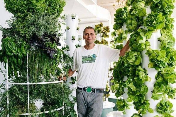 Green Bronx Machine : l'agriculture urbaine pour aider les élèves en difficulté