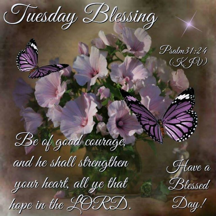 Good Morning Blessings In Spanish : Best images about daily blessings on pinterest