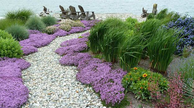 Coastal Backyard Garden Landscape  -Feel the sea breeze in a coastal garden-inspired backyard design with ground-covering ornamental plants and swaying grasses. Use landscaping materials available around you for a practical design.