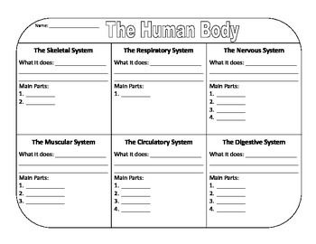 "This graphic organizer goes along with ""The Human Body ..."