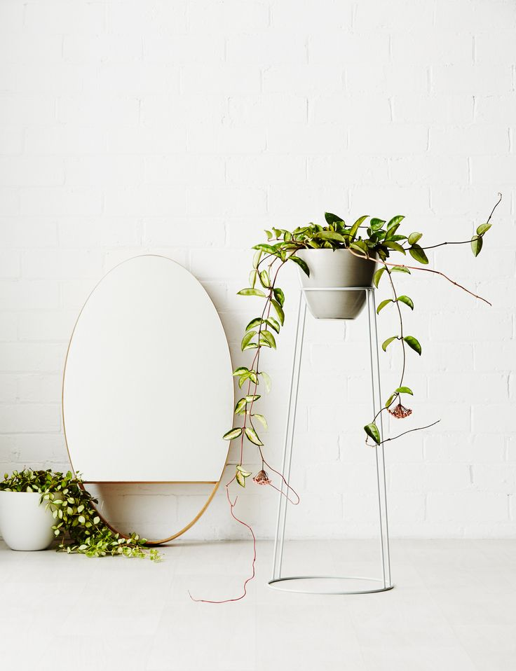Ivy Muse HOMEBODY Collection; 'Willow' in limited edition Glacier with 'Homebody Pot' in Eskimo Grey