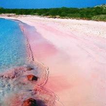 73 Best Pink Beach Sardinia Italy Images On Pinterest