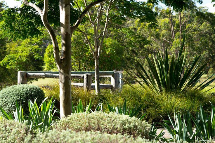 Diamond Beach Landscape Architecture