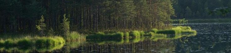 Welcome to the Big Trek in Nuuksio lake uplands! The dates and more info on our website. The group for July, 2, already began to form.