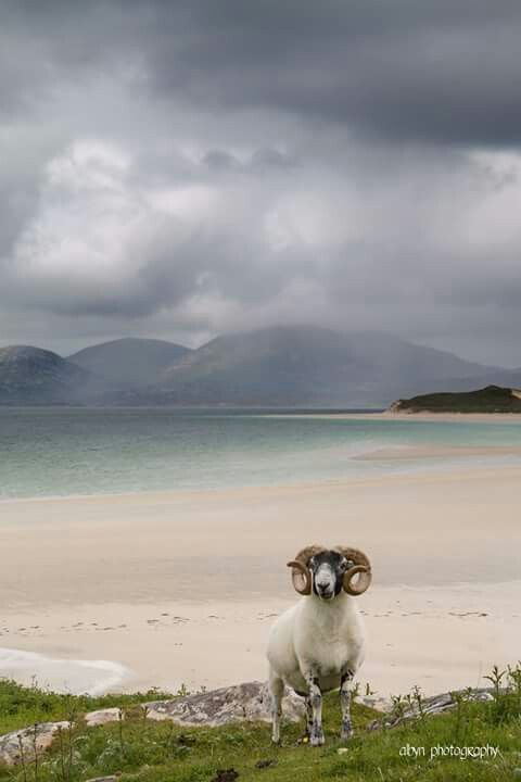 Seilebost , Isle of Harris