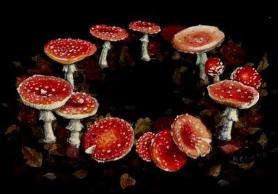 In English folklore, mushroom rings were known as fairy or pixie rings. These were caused by the wee folks dancing in a circle. As they wore down the grass, they left a circular pattern of basidia (a type of mushroom) behind.