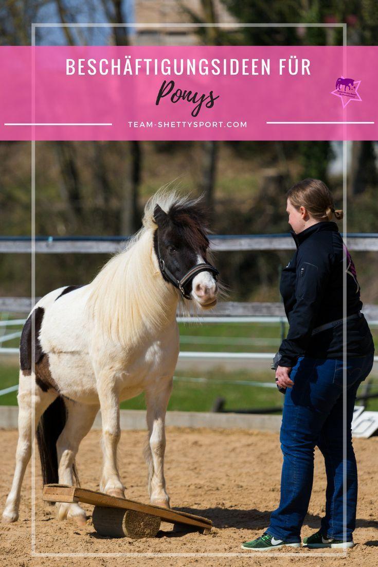 Du Kannst Dein Pony Nicht Reiten Kein Problem Deswegen Mussen Ponys Noch Lange Keine Dicken Rasenmaher Sein Wir Zei Pferde Training Bodenarbeit Pferd Reiten