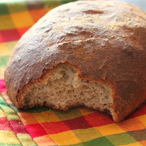 about sourdough dough on Pinterest | Honey beer bread, Easy sourdough ...