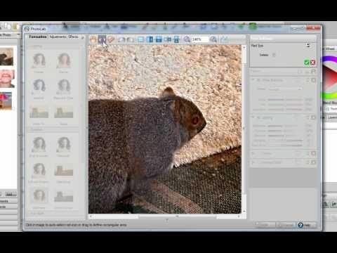 PhotoLab Basics in Digital Scrapbook Artist 2