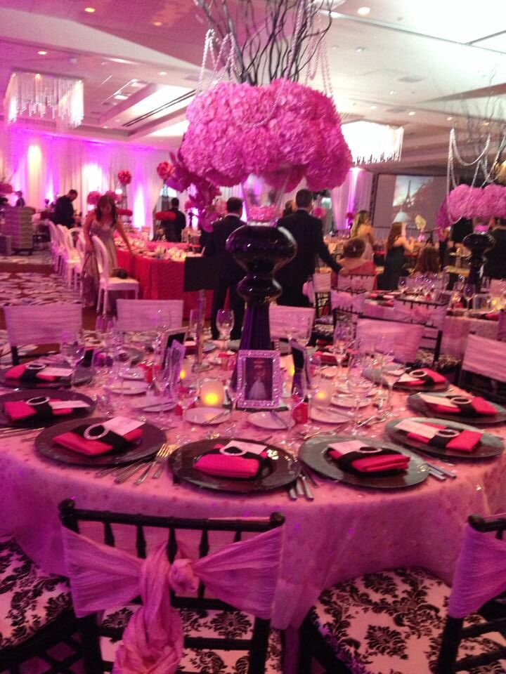 Quinceanera theme night in Paris ... Pink anyone