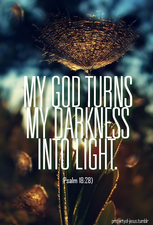 For You will light my lamp; The Lord my God will enlighten my darkness. For by You I can run against a troop, By my God I can leap over a wall. (Psalms 18:28, 29 NKJV)