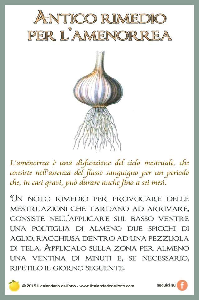 Antico rimedio per l'amenorrea