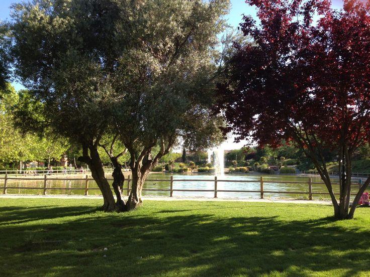 Parque Tierno Galvan