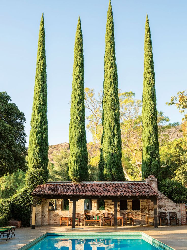 Towering cypress trees behind Sitting Bull cottage, which dates back to the 1920s.